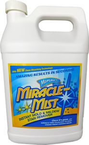 1G Instant Mildew Stain Remove
