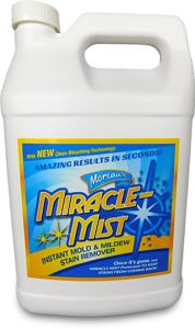 5G Instant Mold & Stain Remover