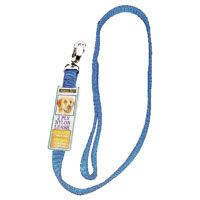 Aspenpet 21088 Pet Leash, 6 ft L, Blue