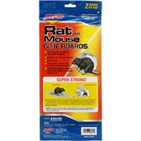 TRAPS RAT/MOUSE GLUE