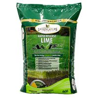 TurfCare 903071 Soil Conditioner with Humic and Iron, 30 lb Bag