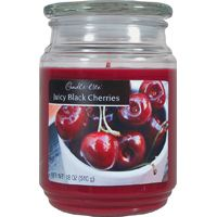 Candle-Lite 3297565 Jar Candle, Burgundy