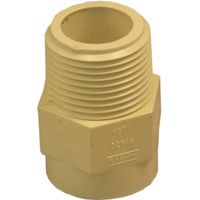 GENOVA 500 Series 50407 Male Adapter, 3/4 in MIP, 3/4 in Slip