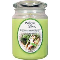 Willow Lane 1646043 Jar Candle, Green