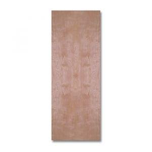 Flush Door Single Panel