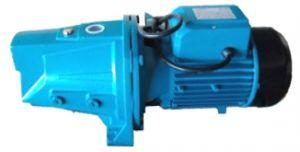 Leo water pump 110V